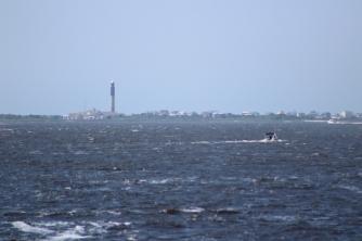 Lighthouse 7 (1)