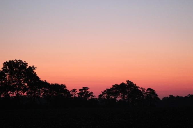 sunrise-alabama