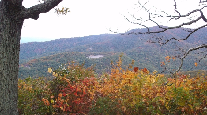 skyline-drive-in-autumn