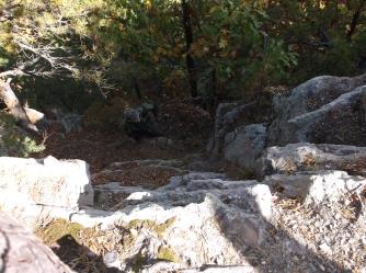 Masanutten Trail 29