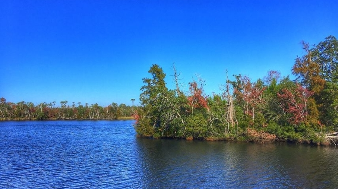 blackwater-river-santa-rosa-county-florida