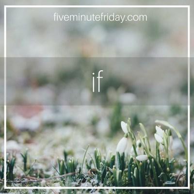 FMF, If