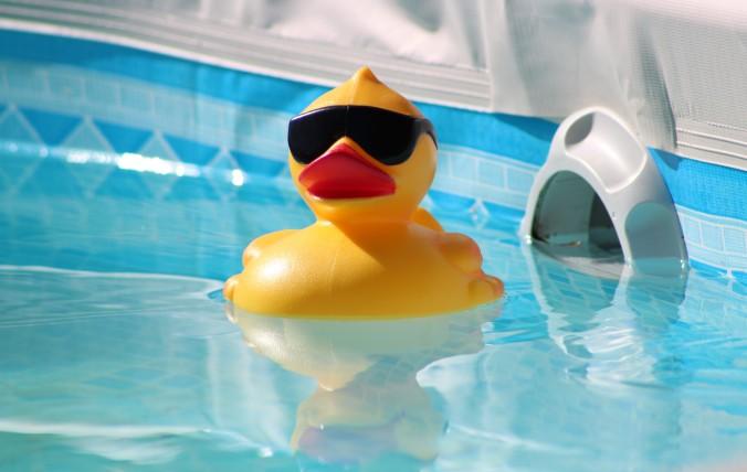 Pool, Ducky (2)