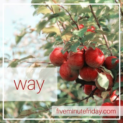 "red berries on a bush and the word ""way"""